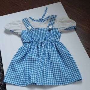 Dorothy costume wizard of oz dress size 4T